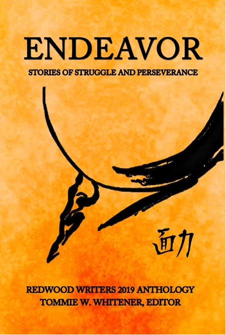 Endeavor: Stories of Struggle and Perseverance